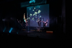 The Roosters - Men's Cabaret & Burlesque Show